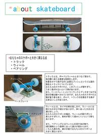 About_skateboard_from_5nuts