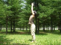 息を吸いながら腕を横から上げ、手の平を合わせ空高く両手を天に向けます。