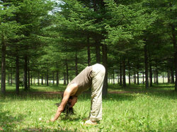 息を吐きながら、腰の付け根からゆっくり上体を前に倒します。