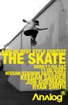 The_skate6